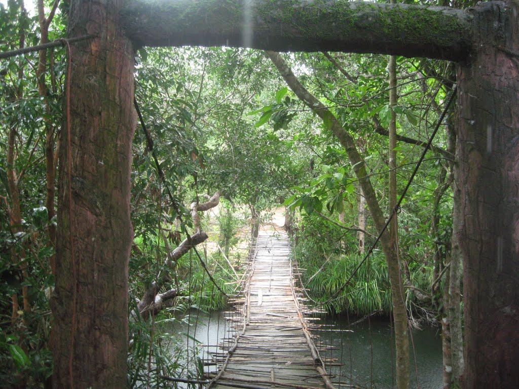 Cầu treo vào Suối Đá Bàn