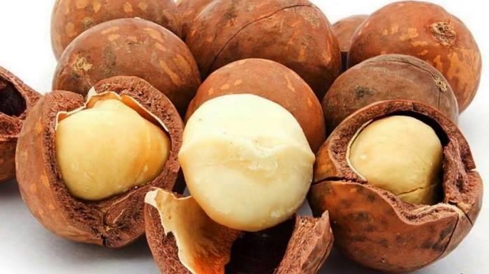 Hạt Macca thích hợp cho các chế độ ăn kiêng, có lợi cho những người có bệnh tiểu đường.