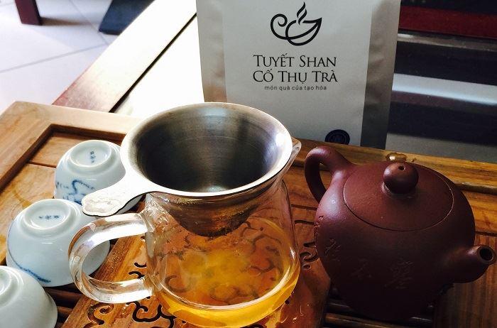 Trà Shan tuyết cổ thụ - Đặc sản trà biếu Tết độc đáo